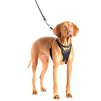 Azienda di animali Non-Pull Harness per cani di grossa taglia L dimensione cane formazione controllo