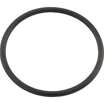 Pentair 071426 Union O-Ring Fits Pentair 160317 & 160318 Clean & Clear