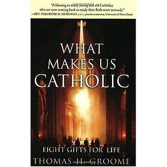 Vad gör oss katolska av Groome & Thomas H.