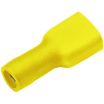 Blade receptacle Connector width: 4.8 mm Connector thickness: 0.8 mm 180 ° Insulated Yellow Cimco 180272 1 pc(s)