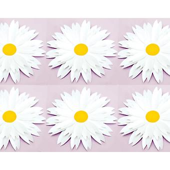 6 Diecut Daisies for Adults Craft - White | Paper Floristry Supplies