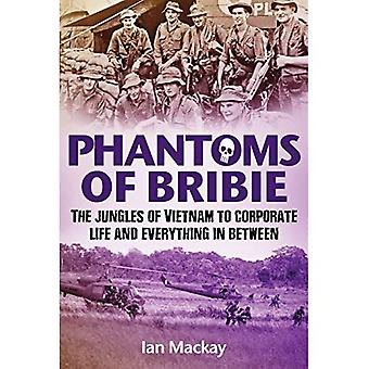 Phantoms of Bribie: The Jungles of Vietnam to Corporate Life and Everything in Between