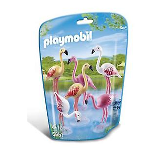 Playmobil 6651 Flamencos (Toys , Dolls And Accesories , Miniature Toys , Animals)