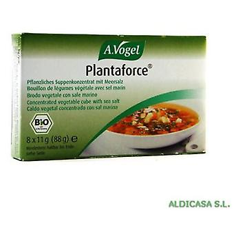 A.Vogel Plantaforce Normal 8 cubes