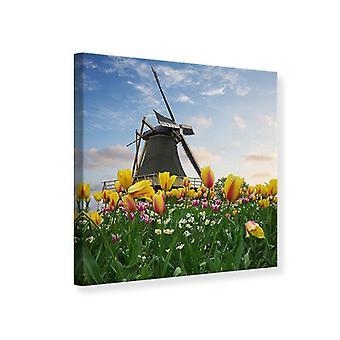 Lærred Udskriv vindmølle med Tulips