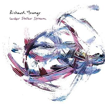 Richard Youngs - Under Stellar Stream [Vinyl] USA import