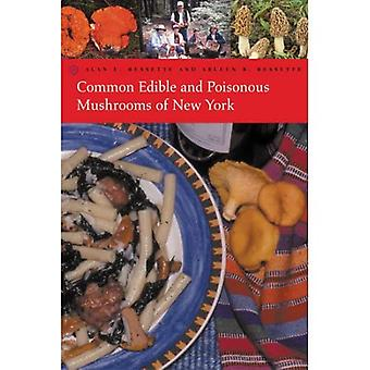 Common Edible and Poisonous Mushrooms of New York