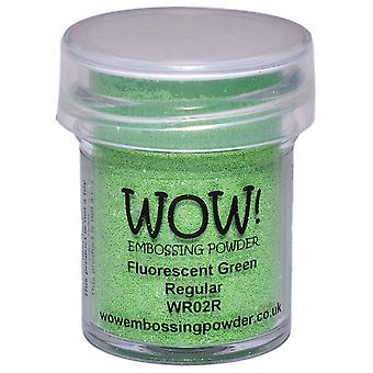 Wow! Embossing Powder 15Ml Fluorescent Green Wow Wr02r