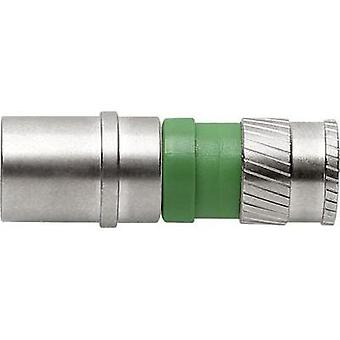 F-COMPRESSION-STECKER CFS 99-48