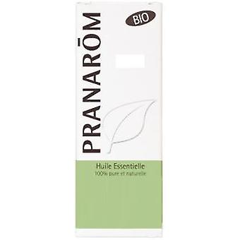 Pranarom Essential Oil Yarrow (Dieet en voeding , Kruiden remedies , Essential oil)