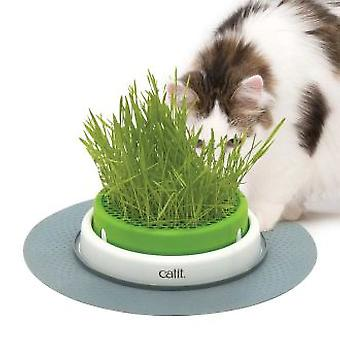 Catit Senses 2.0 Grass Planter Germoir (Chats , Malt et Herbes)
