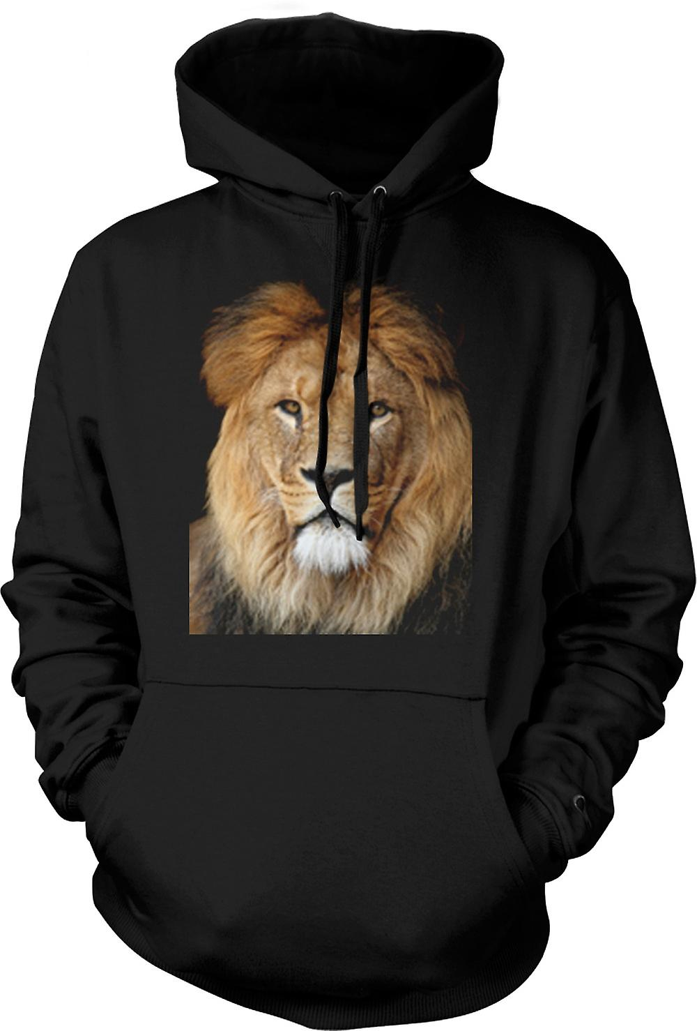 Mens Hoodie - Lion Couleur Portrait