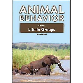 Tiere leben in Gruppen von Toney Allman - 9781604131420 Buch