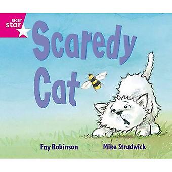 Rigby Star guidé chat accueil : Scardey