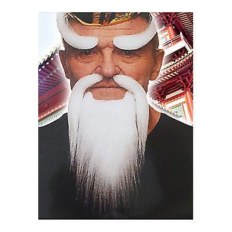 Beards and mustaches  Witte baard sensei