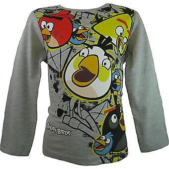 Drenge Angry Birds langærmet Top