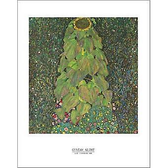 Die Sonnenblume Poster Print by Gustav Klimt (22 x 28)