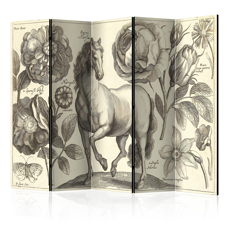 Paravent 5 volets - Horse II [Room Dividers]