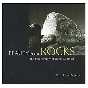 Beauty in the Rocks : The Photography of David M. Baird