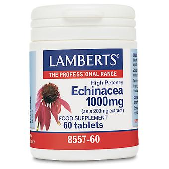 Lamberts Cap. Echinacea 1000mg 60cap (Vitamine e supplementi , Nutrienti)