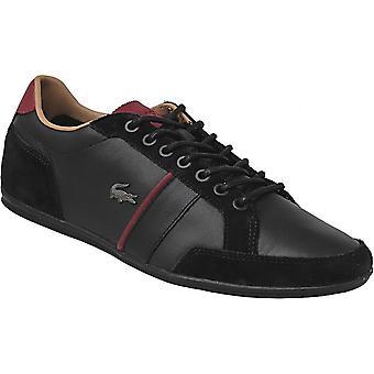 Lacoste Alisos 117 1 CAM1018024 universal summer men shoes