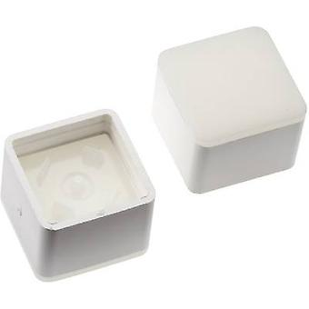 Switch cap White Mentor 2271.1012