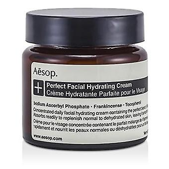 Perfect Facial Hydrating Cream - 60ml/2oz