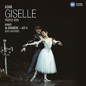 Various Artist - Adam: Giselle [CD] USA import