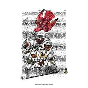 Flying Birdcage Poster Print by Fab Funky (13 x 19)