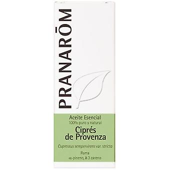 Pranarom Cypress of Provence Essential Oil