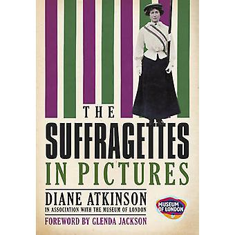 The Suffragettes - In Pictures by Diane Atkinson - 9780752457963 Book