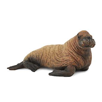 CollectA Walrus Calf
