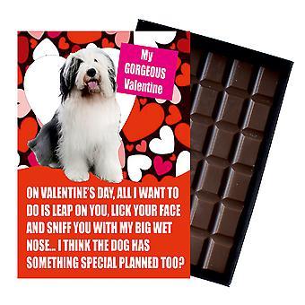 Gamla engelska får gåva för alla hjärtans dag presenterar hundälskare boxed choklad
