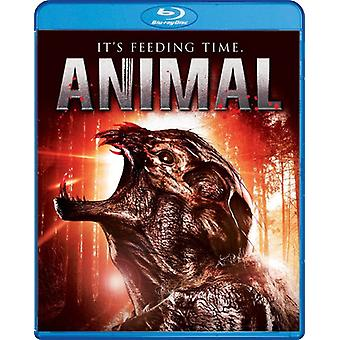 Animal [BLU-RAY] USA import