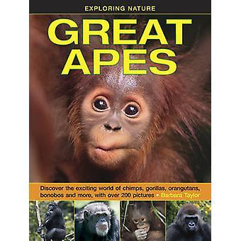Exploring Nature - Great Apes by Barbara Taylor - 9781861474520 Book