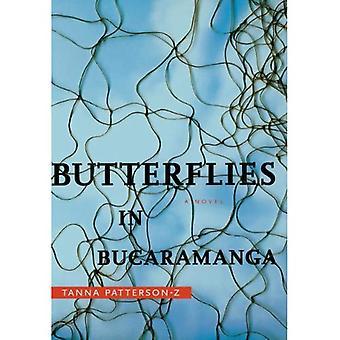Butterflies in Bucaramanga