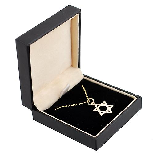 9ct Gold 18mm Star of David with Cable link chain