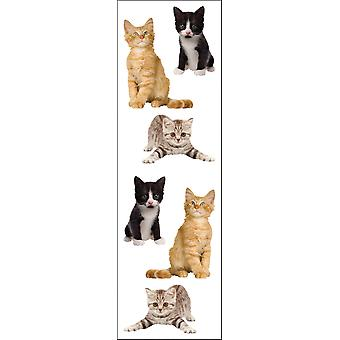 Stickers adorables chatons Mg199 de Mme Grossman 04413