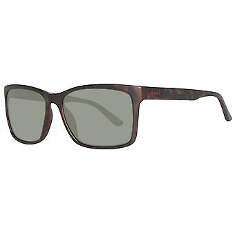 GANT glasögon solglasögon speglade mens Brown