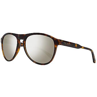Óculos de sol de Ted Baker mens Brown