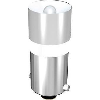 Signal Construct LED bulb BA9S White 24 Vdc 2000 mcd 428 mlm MEDB2564