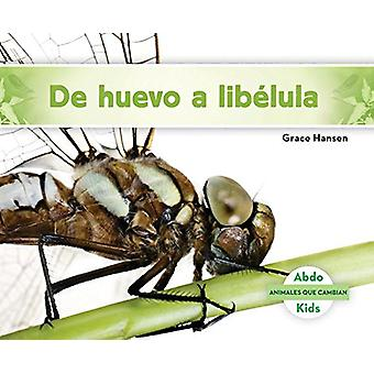 de Huevo a Libélula (Becoming a Dragonfly) by Grace Hansen - 97816240