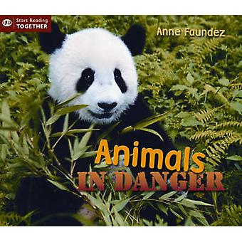 Animals in Danger by Anne Faundez - 9781845383114 Book