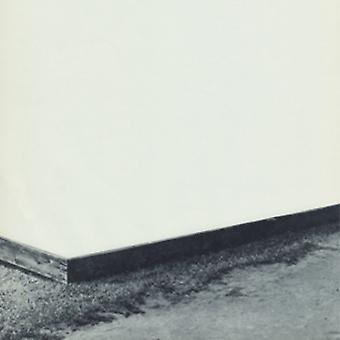 Willamette - Diminshed sammensætning [Vinyl] USA import
