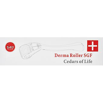 Derma Roller Master Micro Needle System Skin Anti-Ageing Acne Stretch Marks Cellulite 1.0 mm