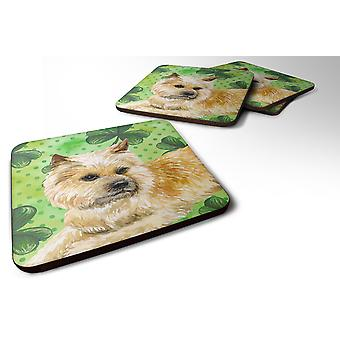 Set of 4 Cairn Terrier St Patrick's Foam Coasters Set of 4