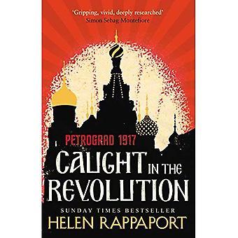 Gefangen in der Revolution: Petrograd, 1917