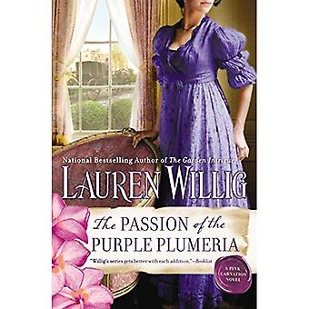 De passie van de paarse Plumeria