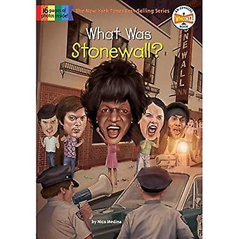 Che cosa è stato Stonewall?