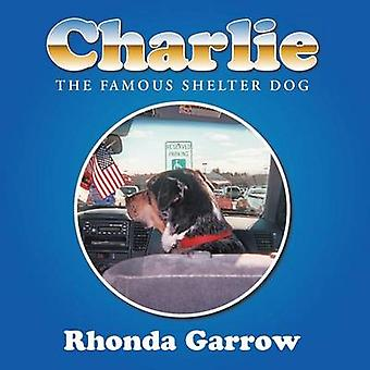Charlie the famous shelter dog by Garrow & Rhonda